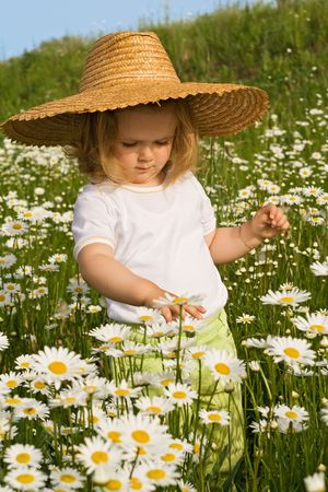 Little girl admiring the flowers on a daisy field in spring or summer time photo
