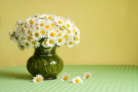 Rich daisy bouquet in a vase on the table Stock Photo