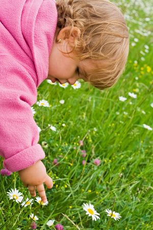 Little girl outdoors in springtime picking flowers photo