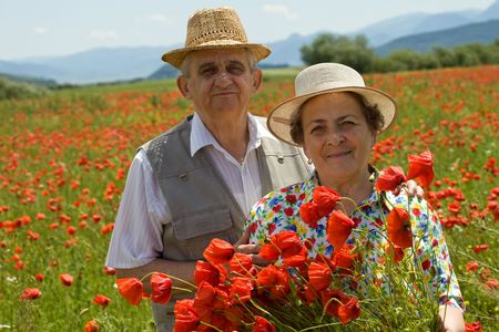 Contented senior couple on the poppy field enjoying summer, picking flowers photo