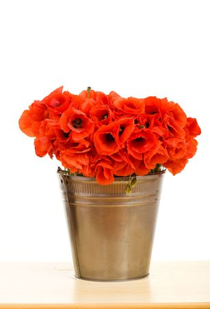 Red poppy flowers in metallic bucket on the table - isolated photo