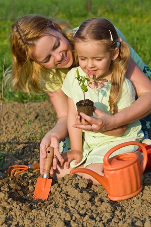 teaching: Woman and little girl growing healthy food - planting tomato seedlings