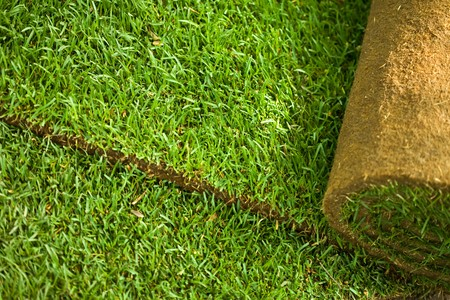 Green turf grass roll closeup and background