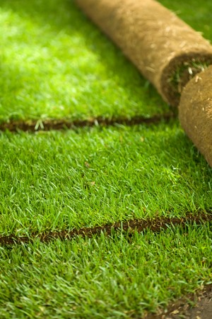 Turf grass rolls partially unrolled revealing a fresh green lawn - shallow depth of field photo