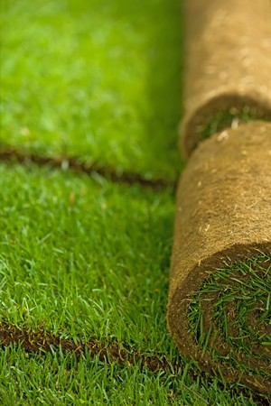 spring roll: Turf grass rolls in a row partially unrolled - shallow depth of field Stock Photo