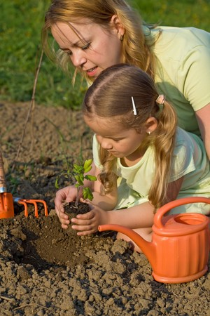 Woman and little girl planting a tomato seedling in the garden - slight motion blur photo