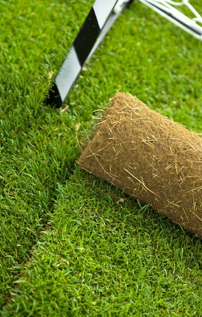 Turf grass roll partially unrolled on sport field - closeup photo