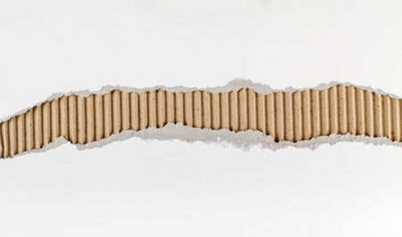 underlying: Torn paper strip series - white cardboard ripped apart showing underlying corrugated brown layer