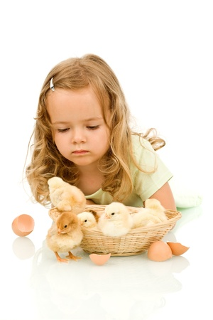 Little girl with small fluffy chickens studying them Stock Photo - 9054704
