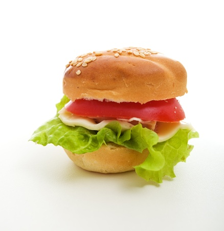 vegetarian hamburger: Bite size vegetarian hamburger on white surface Stock Photo