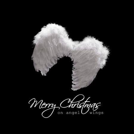alas de angel: Alas de �ngel blanco iluminado desde lo alto - saludo de Navidad en negro Foto de archivo