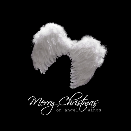 White angel wings lit from above - christmas greeting on black photo