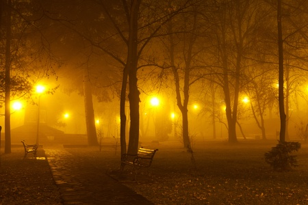 streetlights: The haunted alley - foggy evening in the park