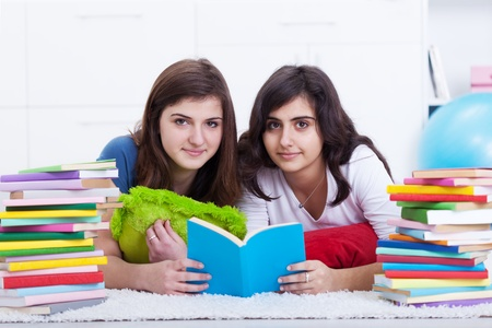 Tutoring concept - girls learning together with lots of books