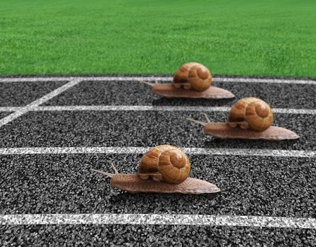 lane lines: Snails race on sports track near the finish line Stock Photo