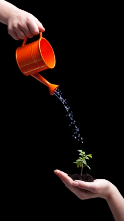 emphasis: Care about the environment concept - small plant held in hand and watered Stock Photo