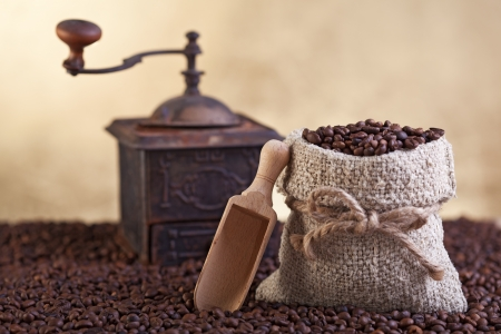 Coffee beans abundance with small sack and old grinder photo