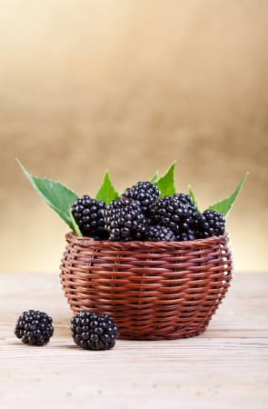 Fresh blackberries with leaves in small basket on golden background photo