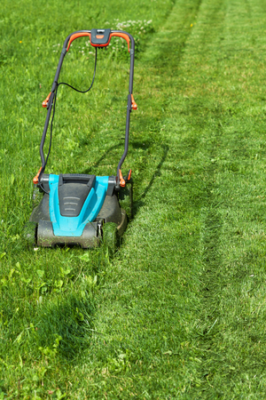 cut the grass: Freshly cut grass strips and blue lawnmower in summertime - copy space Stock Photo