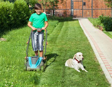 Boy pushing a lawnmower through the partially mowed yard lawn - accompanied by his lazy labrador  dog photo
