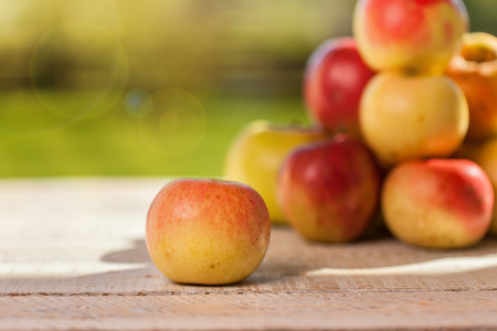 Apples from the garden - on wooden table in autumn warm lights