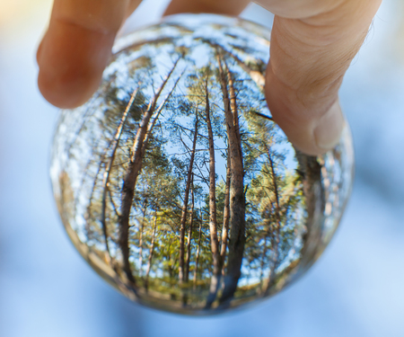 Trees reflected in glass sphere held by human hand - ecology in our hand concept, shallow depth 스톡 콘텐츠