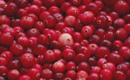 arandanos rojos: Ar�ndanos frescos Roja