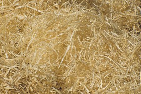 shavings: wood shavings Stock Photo