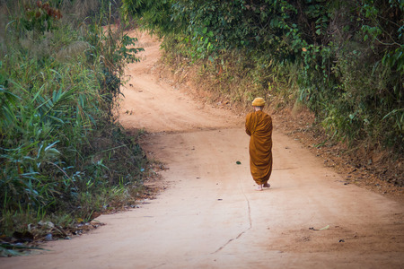 alms: Alms Round of Buddhist Monk in Thailand.