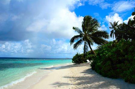 Landscape of an maldivian island Stock Photo