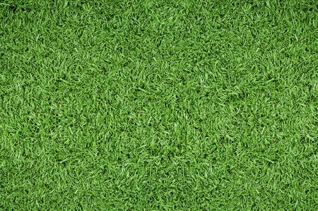 mowing grass: Green grass background of soccer field  Stock Photo