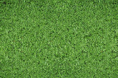 Groen gras achtergrond van voet bal veld