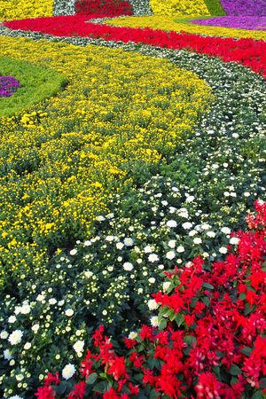 Flower bed Stock Photo - 5663591
