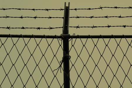 Barb wire and fence photo