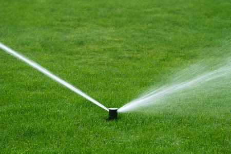 sprinkler: Lawn sprinkler spraying water