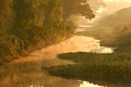fog on water in countryside photo