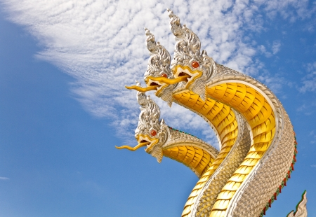 Golden naga in Thailand photo