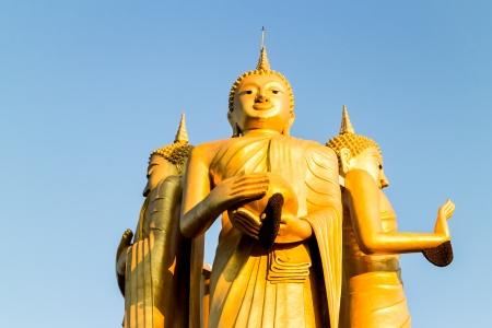 chiangmai: golden buddha in wat sumpanyu chiangmai Thailand