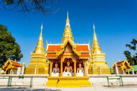 buddha statue wat phratajhaduang lumphun Thailand Stock Photo - 24723663