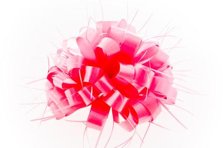 lazo rosa: lazo rosa sobre fondo blanco.