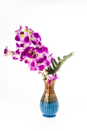 vanda: vanda orchid in vase