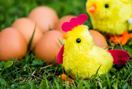 brinquedo de galinha na grama
