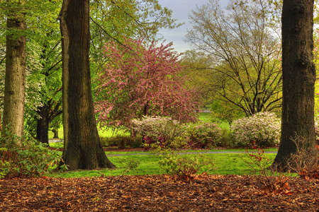 Picturesque Spring scene at Warnico Park, NJ Imagens