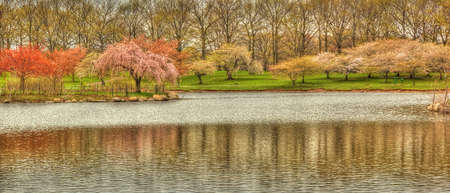 picturesque spring scene at Warnico Park-NJ Imagens