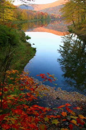 Big Pond Catskills Foliage - Delaware County, NY photo