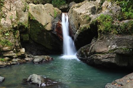 national forest: Las ca�das y por debajo de la piscina de La Mina Falls en el bosque tropical El Yunque en el Bosque Nacional del Caribe, Puerto Rico Foto de archivo