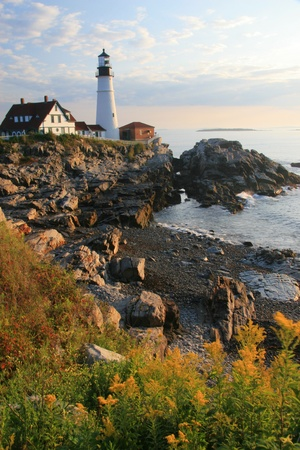 portland: Vertical view of the Portland Head Light House and wildflowers in early morning - South Portland, ME Stock Photo