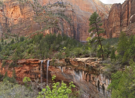 Water falls from a forested canyon over a red cliff at Emerald Pools in Zion National Park, Utah