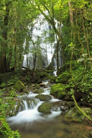 Seasonal waterfall seen through the forest at Rincn de la Vieja National Park photo