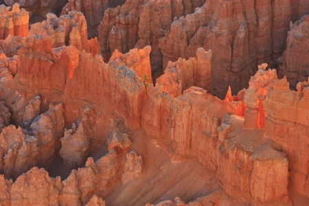 Sunrise backlights  a ridge of sandstone cliffs and hoodoos in pink light in Bryce Canyon National Park, Utah photo